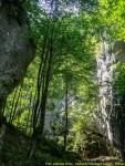 Verde crud - Cheita Cheii